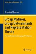 Group Matrices, Group Determinants and Representation Theory