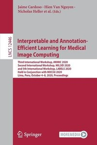 Interpretable and Annotation-Efficient Learning for Medical Image Computing