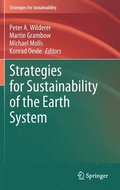 Strategies for Sustainability of the Earth System