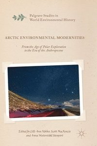 Arctic Environmental Modernities