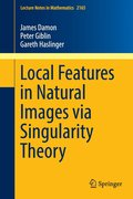 Local Features in Natural Images via Singularity Theory