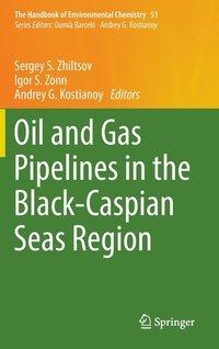 oil and geopolitics in the caspian sea region aras bulent croissant michael