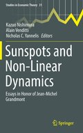 Sunspots and Non-Linear Dynamics