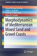 Morphodynamics of Mediterranean Mixed Sand and Gravel Coasts