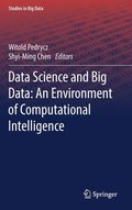 Data Science and Big Data: An Environment of Computational Intelligence