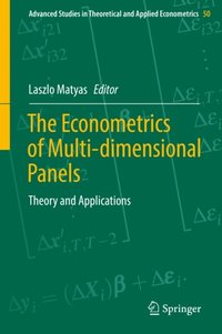 Econometrics of Multi-dimensional Panels