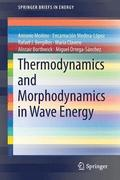 Thermodynamics and Morphodynamics in Wave Energy