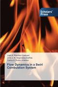 Flow Dynamics in a Swirl Combustion System