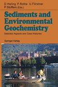 Sediments and Environmental Geochemistry