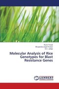 Molecular Analysis of Rice Genotypes for Blast Resistance Genes
