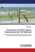 Evaluation of Pile Failure Mechanism by Piv Method