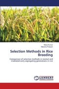 Selection Methods in Rice Breeding