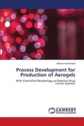 Process Development for Production of Aerogels