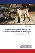 Epidemiology of Peste Des Petits Ruminants in Ethiopia