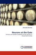 Neurons at the Gate