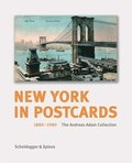 New York in Postcards 1880-1980