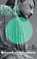 LOCAL FOCUS Vol. 1