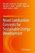 Novel Combustion Concepts for Sustainable Energy Development