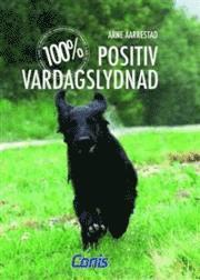 100% Positiv vardagslydnad