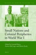 Small Nations and Colonial Peripheries in World War I