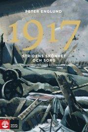 1917 Stridens skönhet och sorg : första världskrigets fjärde år i 108 korta