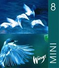 Wings Mini. 8, Elevbok