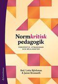 Normkritisk pedagogik - Perspektiv, utmaningar och möjligheter