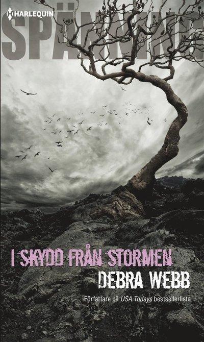 I skydd från stormen