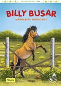 Billy busar