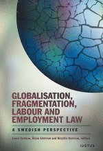 Globalisation, fragmentation, labour and employment law : a swedish perspective