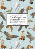 Nils Holgerssons underbara resa (lättläst, CD + bok)