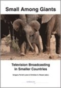 Small among giants : television broadcasting in smaller countries
