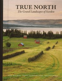 True North : The Grand Landscapes Of Sweden