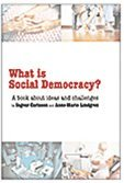 What is social democracy? : A book about ideas and challenges