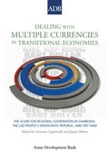 Dealing with Multiple Currencies in Transitional Economies