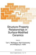 Structure-Property Relationships in Surface-Modified Ceramics