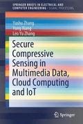 Secure Compressive Sensing in Multimedia Data, Cloud Computing and IoT