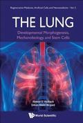 Lung, The: Developmental Morphogenesis, Mechanobiology, And Stem Cells