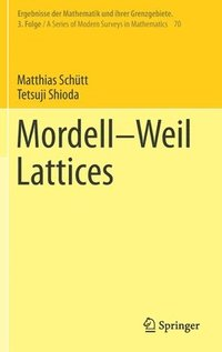 Mordell-Weil Lattices