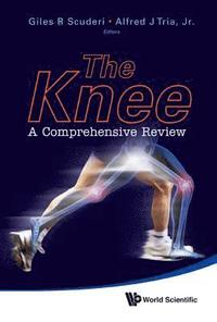 Knee, The: A Comprehensive Review
