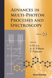 Advances In Multi-photon Processes And Spectroscopy, Vol 20